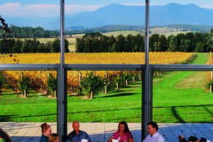 Yarra Valley Flight + Wine Tour