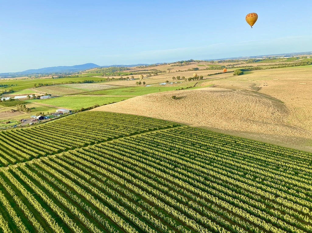 Apply for a Travel Voucher - if eligible, you'll receive $200 when you spend $400+ on Yarra Valley accommodation & flight experience!