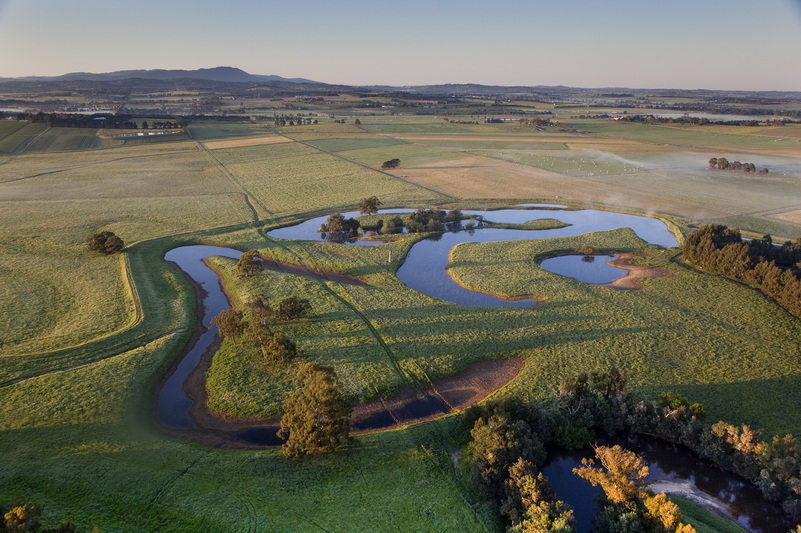 9 Things to do in the Yarra Valley other than Drink Incredible Wine